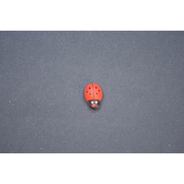Kırmızı Uğur Böceği